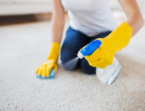 Eco-Friendly Carpet Cleaning Tips